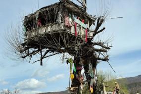 老人自建树屋隐居十年