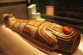 埃及木乃伊身上发现精美纹身 多种图案分布全身