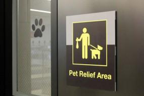 纽约机场设狗厕所 内置草皮消防栓供狗狗方便