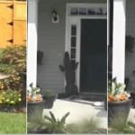 聪明鳄鱼按门铃要求进屋