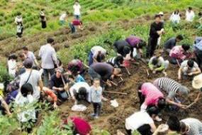 浙江小村上千人进山挖宝石 专家正在鉴定