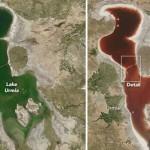伊朗会变颜色的湖:夏天湖水变成酒红色