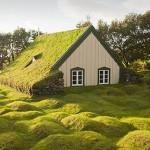 这里到处是童话中绿草覆盖的梦幻小屋