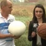 美居民后院发现篮球大白色生物