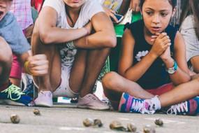 西班牙小镇举办蜗牛赛跑 孩子们训练蜗牛参赛