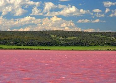 俄罗斯盐湖会变色 夏季蓝绿水变粉红