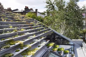 名副其实的花园小屋 屋顶种满多肉植物