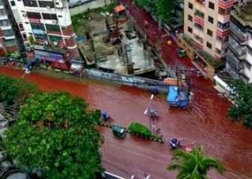 孟加拉宰牲节宰杀上千牲畜  街道血流成河