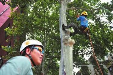 大学开设爬树课女生最踊跃