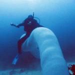 潜水者遇海底罕见巨型怪虫