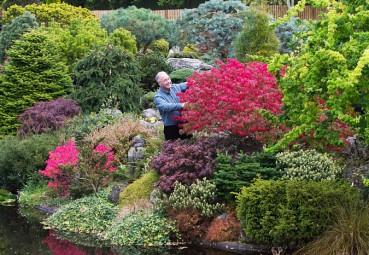 老人花几十年打造后院花园 似梦幻仙境