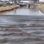 日本地震现河水倒流惊人景象