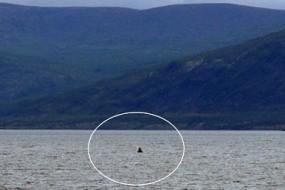 俄高寒湖泊疑隐藏巨型生物 渔网被咬数米大洞
