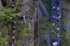 深山悬崖村造钢梯 以前孩子上学都爬藤梯