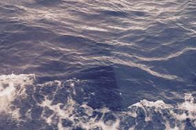 女子拍到尼斯湖底巨大黑色不明物体