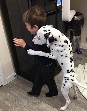 小狗不许小主人离家 紧紧抱住走哪跟哪
