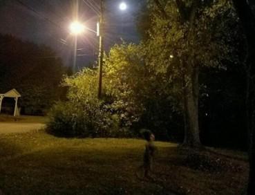 月光下男子拍到草坪上灵异照片