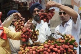 印度小村百名儿童吃荔枝患怪病丧命