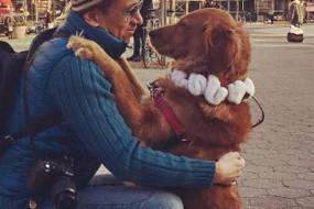 它是一只热情的单身狗 每天街头讨拥抱