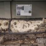 意一餐厅挖出古罗马遗迹  装透明地板供赏