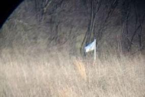 视频只有旗帜和天空 竟被技术宅分析出位置
