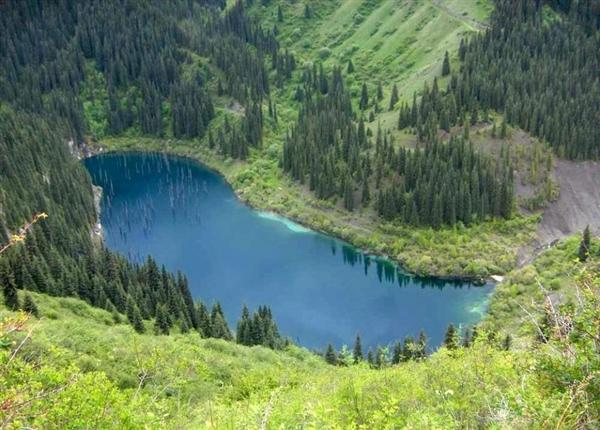 """逆天了 这片树林在湖水中""""倒立生长""""-趣闻巴士"""