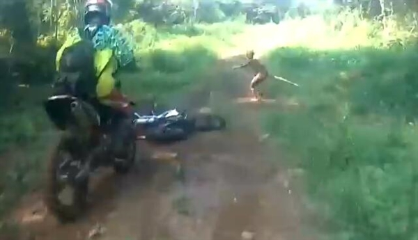 印尼丛林闪出神秘野人:手持长棍比摩托车还快-趣闻巴士