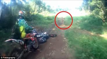 印尼丛林发现神秘矮人 行动敏捷胆小怕人