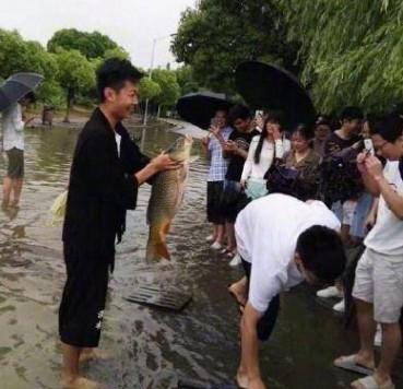 南京突降暴雨 男子路边摸到大鱼