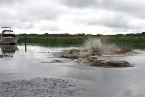 男子往河里倒了一桶水瞬间引来巨大水浪