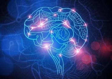 扭头就忘 大脑断片并非坏事