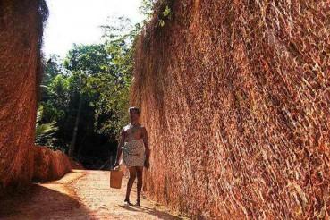 """印度""""愚公""""半身残疾亲手挖出一条山路"""