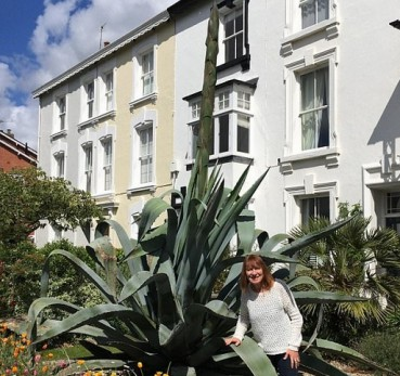 神奇植物:休眠龙舌兰突然长出3层楼高巨型花茎