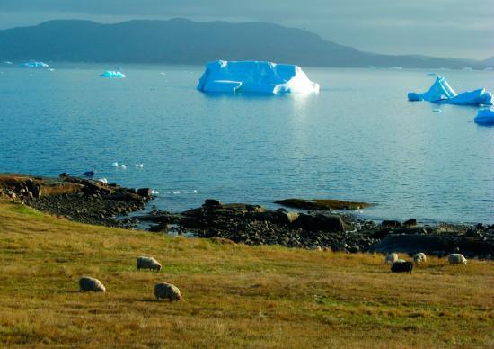 库加塔是亚北极区的一个农业文化景观,坐落于丹麦格陵兰岛南部。它见证了10世纪以来从冰岛迁徙到此的古爱斯基摩狩猎者、18世纪末以后在此发展起来的北欧农民、因纽特猎人及因纽特农业社区的文化历史。尽管两种文化的不同,北欧格陵兰人和欧洲因纽特人还是创造了基于农业、牧业及海洋哺乳动物狩猎业的文化景观。这一景观见证了北极地区最早出现的农业活动,以及北欧人在欧洲以外的定居扩张。 Kenneth H?egh 摄 图片来源:联合国教科文组织世界遗产中心官网-趣闻巴士