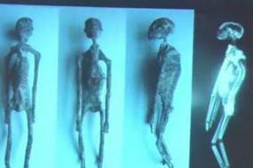 秘鲁神秘干尸只有3指 疑似非人类
