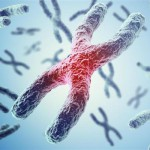 延缓衰老研究重大突破 科学家成功逆转细胞老化