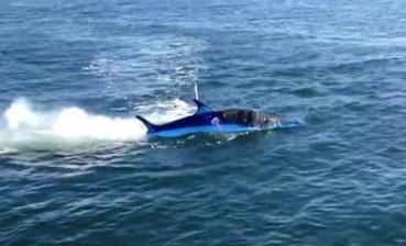 仿真鲨鱼能潜水跳跃 人在鱼肚中操控