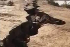 多地出现巨大地表裂缝如末日灾难大片