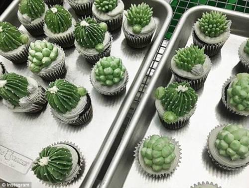 """纽约烘焙师心灵手巧制作百变""""沙漠植物蛋糕""""(组图)-趣闻巴士"""
