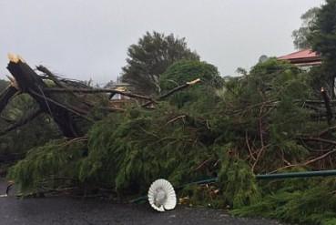男子驾车驶入龙卷风 视频记录恐怖景象