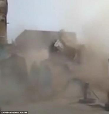 印度一座楼房被上千老鼠啃倒