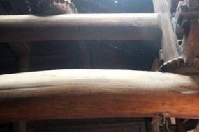 破旧老屋竟是金丝楠木打造 一根梁就值3千万