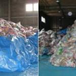 日本灾民吐槽 断水断粮千纸鹤却堆成山