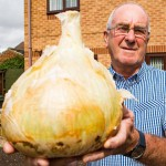 老人种出9斤重超级洋葱可供30人食用