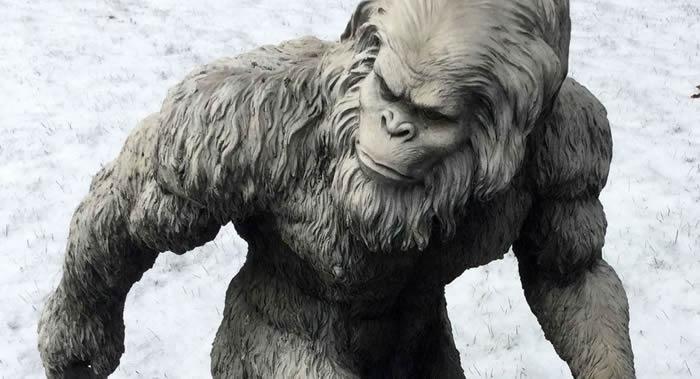 """科学家彻底解开""""雪人""""之谜:生活在喜马拉雅山区的熊-趣闻巴士"""