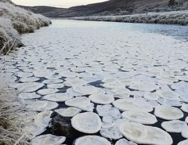 河面漂浮无数神奇冰煎饼