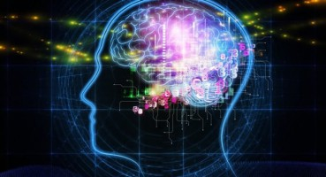 老人用电脑可显著延长大脑寿命