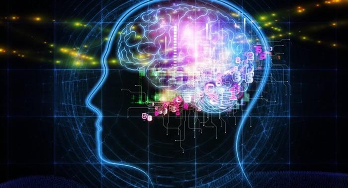 美国神经科学学会科学家:积极刺激大脑活动可显著延长大脑寿命-趣闻巴士